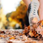 fall marathon